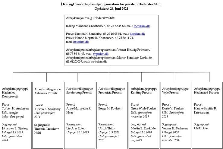 Diagram over arbejdsmiljøorganisationen for præster i Haderslev Stift